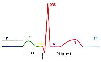 خواندن و تفسیر نوار قلب QRS